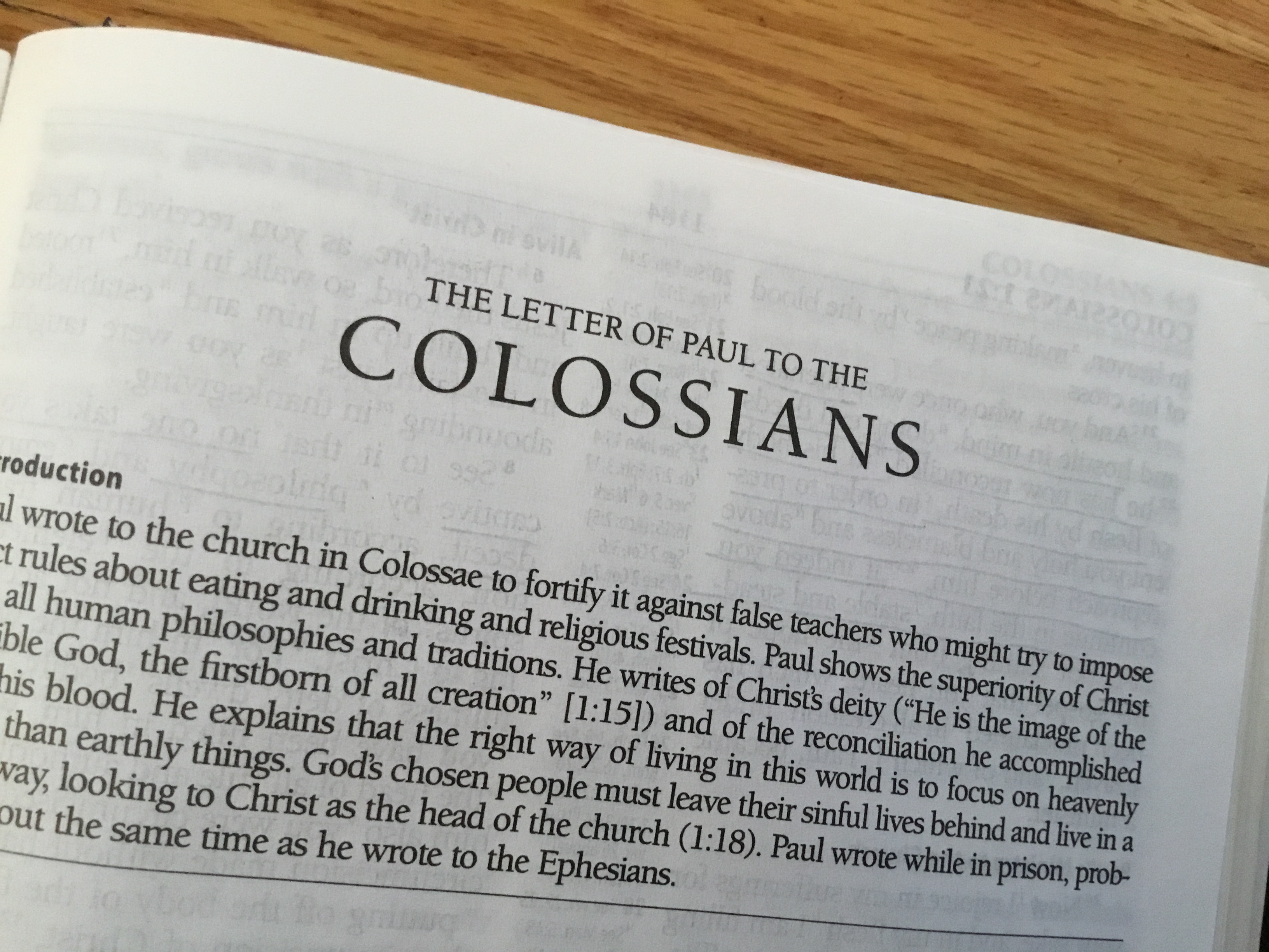 Our sermon series continues…here is Bishop Jane's sermon from February  17th on Colossians 3:6-15